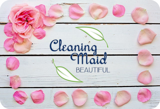 Cleaning Maid Beautiful